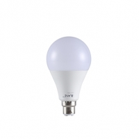 Blaze AC LED Bulb 13W B22 DL 807910
