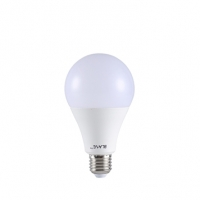 Blaze AC LED Bulb 13W E27 DL 807911