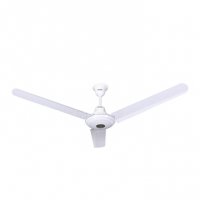 Click Ceiling Fan 807046
