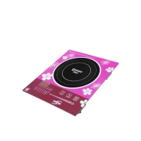 Dessini Induction Cooker DI-IN12