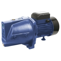 Walton Domestic Pump WWP-HY10J