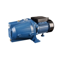 Walton Domestic Pump WWP-LX-JET60