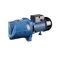 Walton Domestic Pump WWP-LX-JSW10M