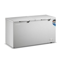 Conion Deep Freezer BE-363S/B (Double Door)