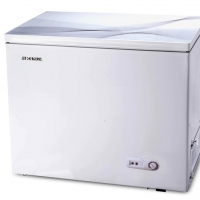 Rangs Glass Door Freezer RCF-462CHG