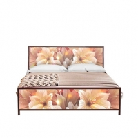Regal Furniture Bed BDH-223-2-1-02