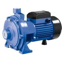 Walton Water Pump WP2XCm25/160A-3.0